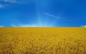 З Днем Прапора України