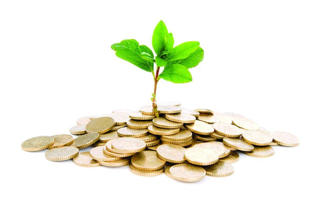КУЩОВА НАРАДА за темою:  «Розвиток малого та середнього бізнесу на селі»