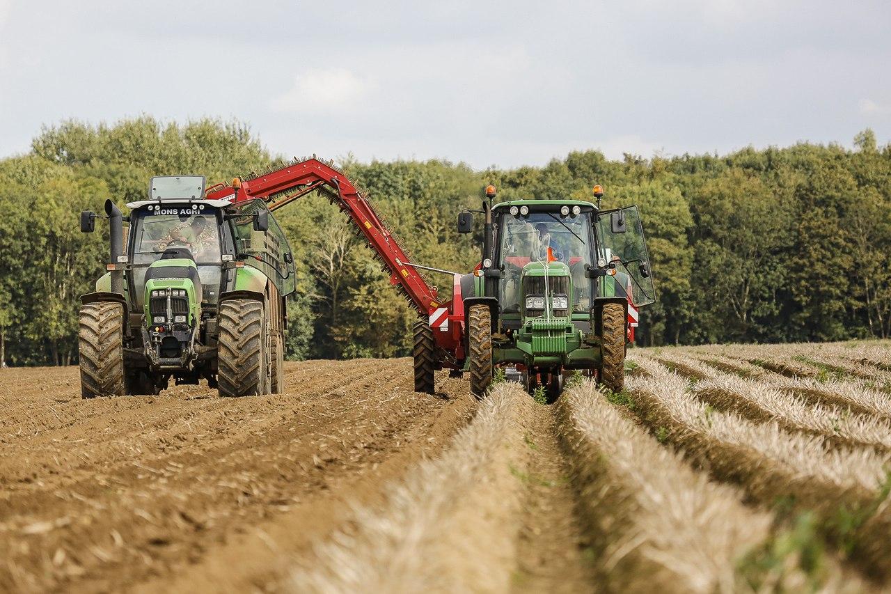 Стан розвитку галузей рослинництва у донецькій області (на 29.08.2016)