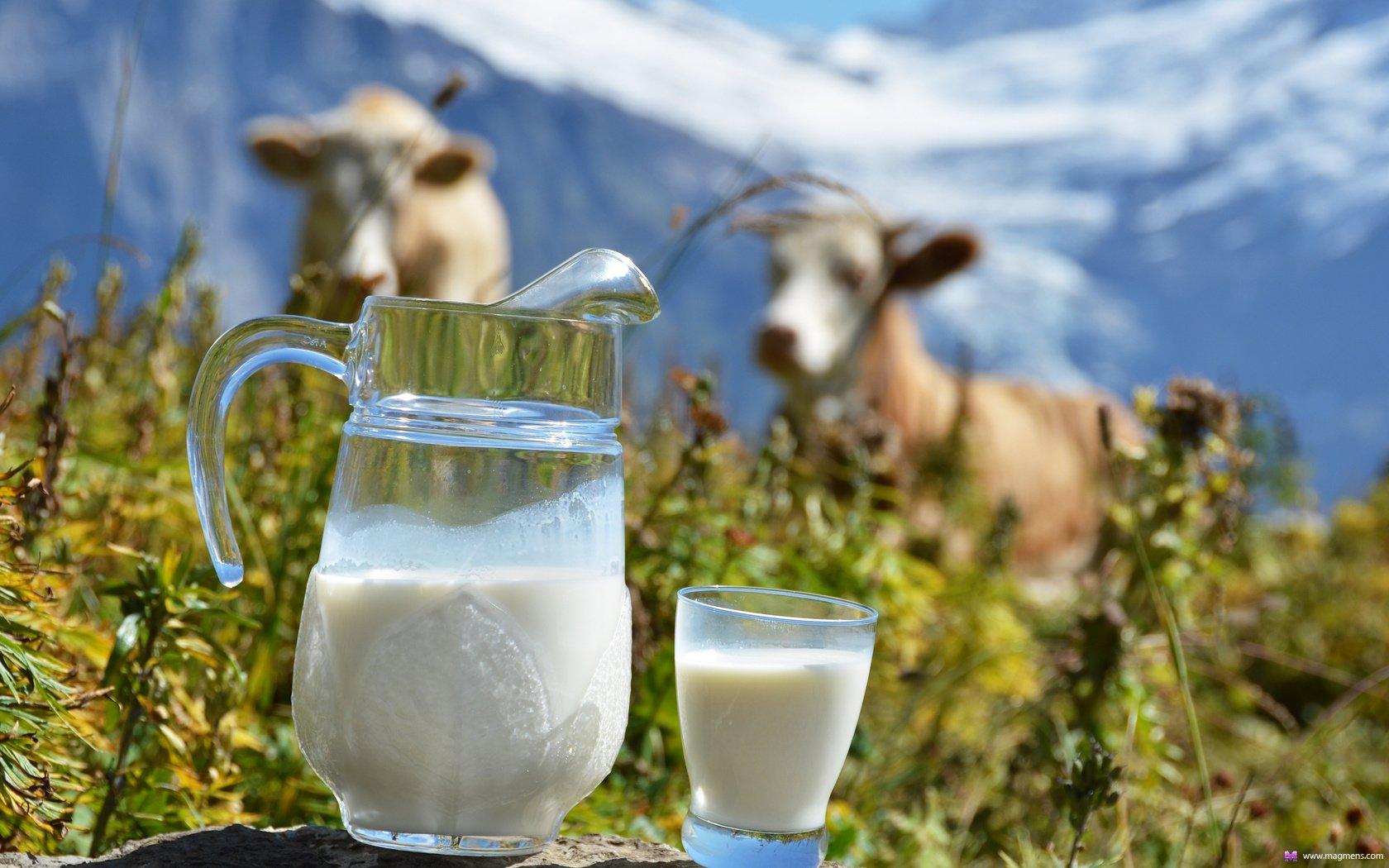 Середньодобовий надій молока Донецької області (станом на 29.09.2016)
