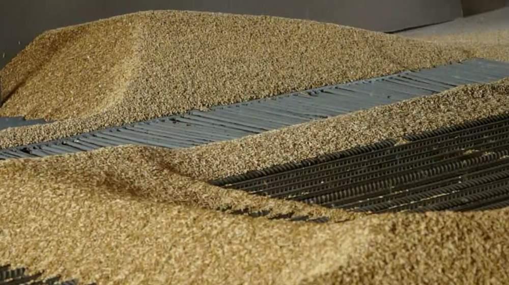 Ціни на зерно нового урожаю (станом на 21.10.2016)
