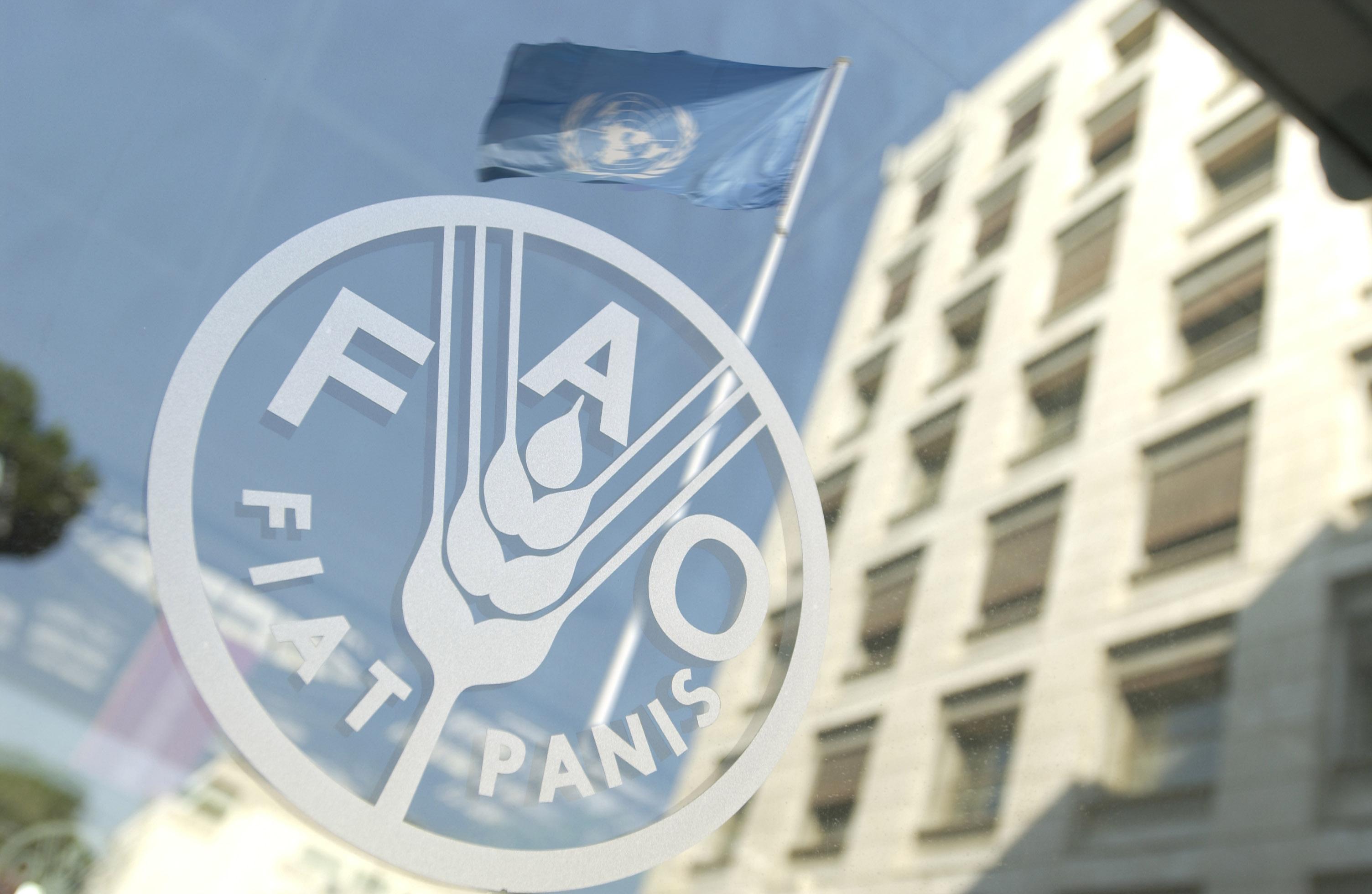 Презентація Продовольчої і сільськогосподарської організації ООН (ФАО)