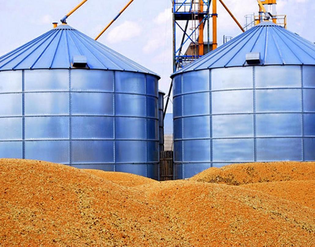 В поточному маркетинговому році філії ДПЗКУ прийняли на зберігання майже 2 млн тонн зернових