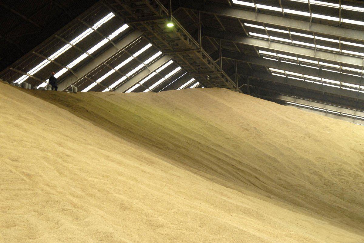 Ціни на зерно, соняшник, кукурудзу (на 07.04.2017)