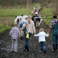 Десять кроків до сімейного фермерського господарства
