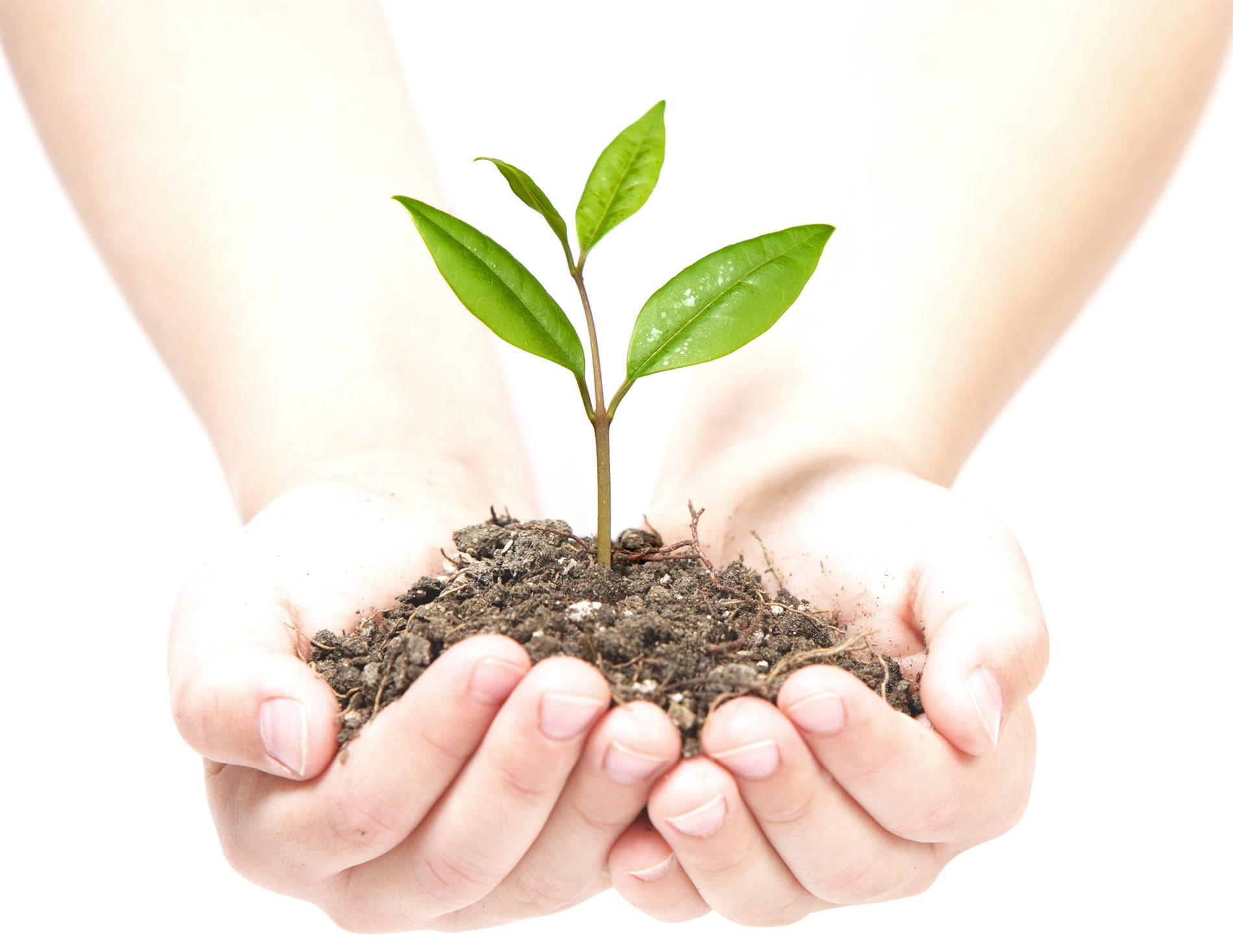 Презентація успішного еконочіного розвитку сільськогосподарського обслуговуючого кооперативу «Універсал»