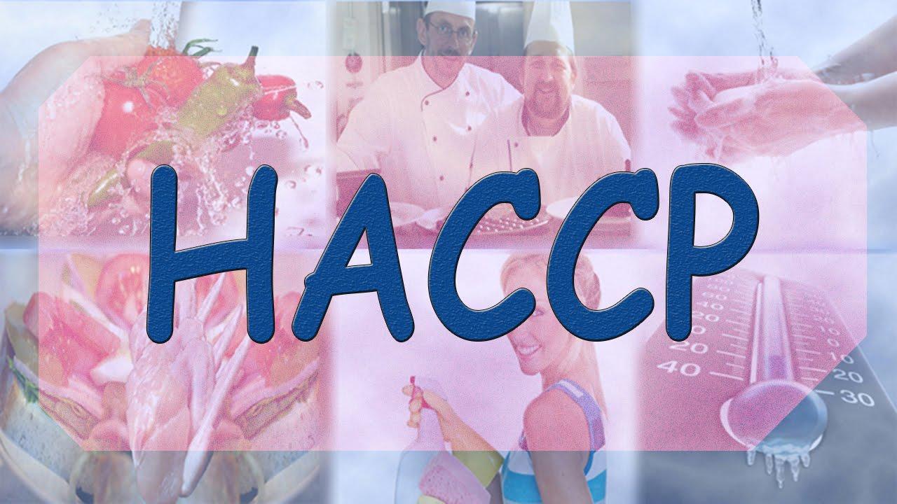 Стан впровадження HACPP та міжнародних систем управління якістю на підприємствах харчової та переробної промисловості