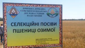 Відбувся обласний семінар-нарада з питань реалізації основних напрямків регіональної сортової політики в агрокліматичних умовах Донецької області.