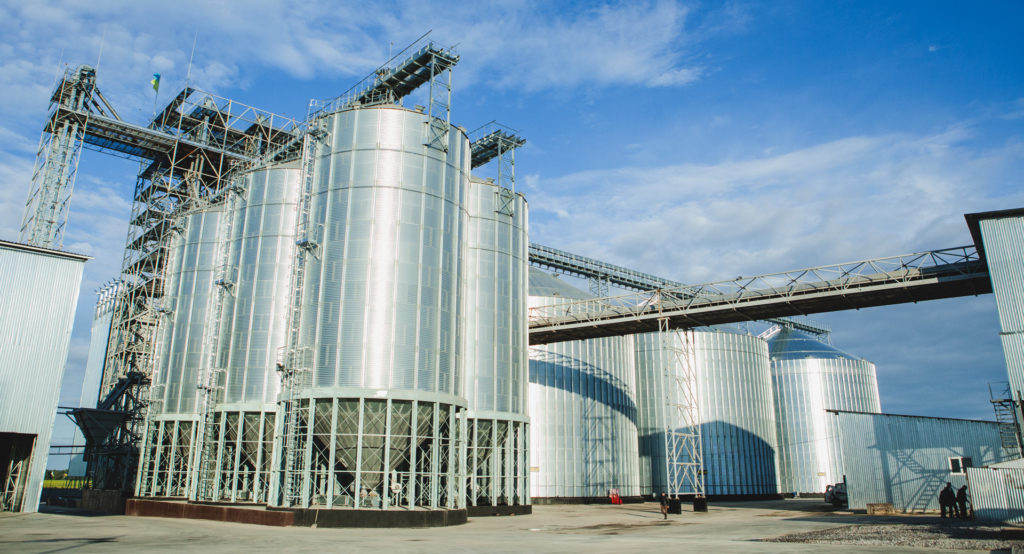 Ціни на зерно, соняшник, кукурудзу (на 03.11.2017)
