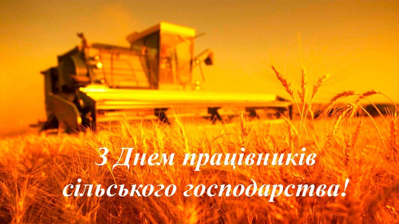 """Результат пошуку зображень за запитом день працівників сільського господарства привітання"""""""