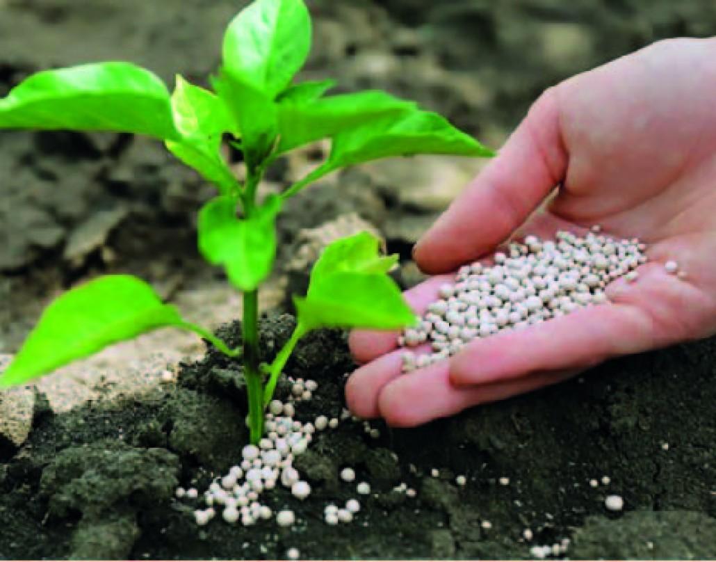 ПАТ «Аграрний фонд» розпочинає весняну кампанію з продажу мінеральних добрив