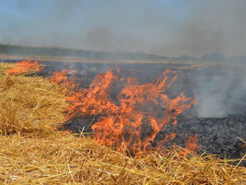 ПАМ'ЯТКА щодо недопущення пожеж в агропромисловом комплексі