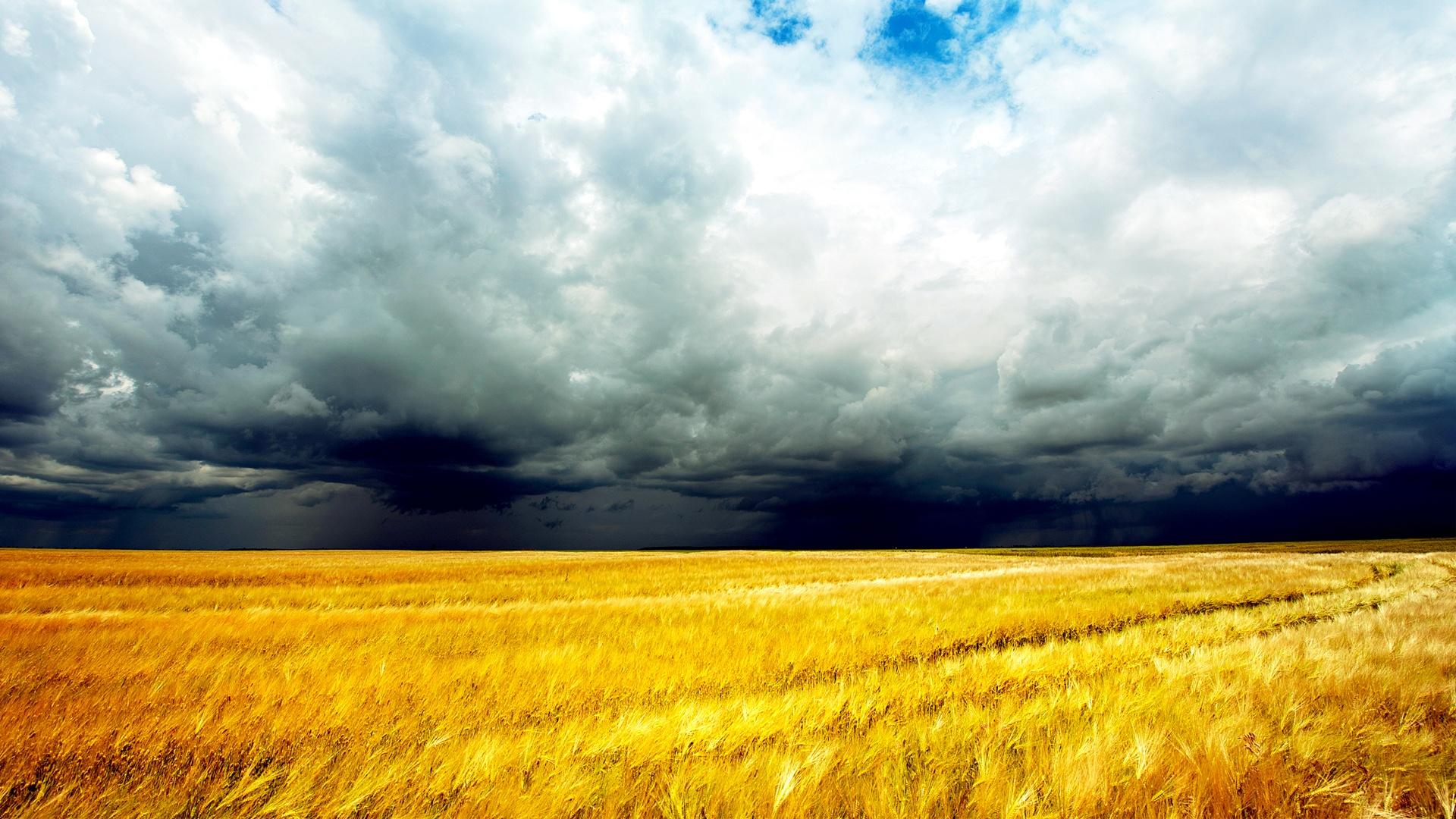 Запаси продуктивної вологи у ґрунті (у мм) на території Донецької області