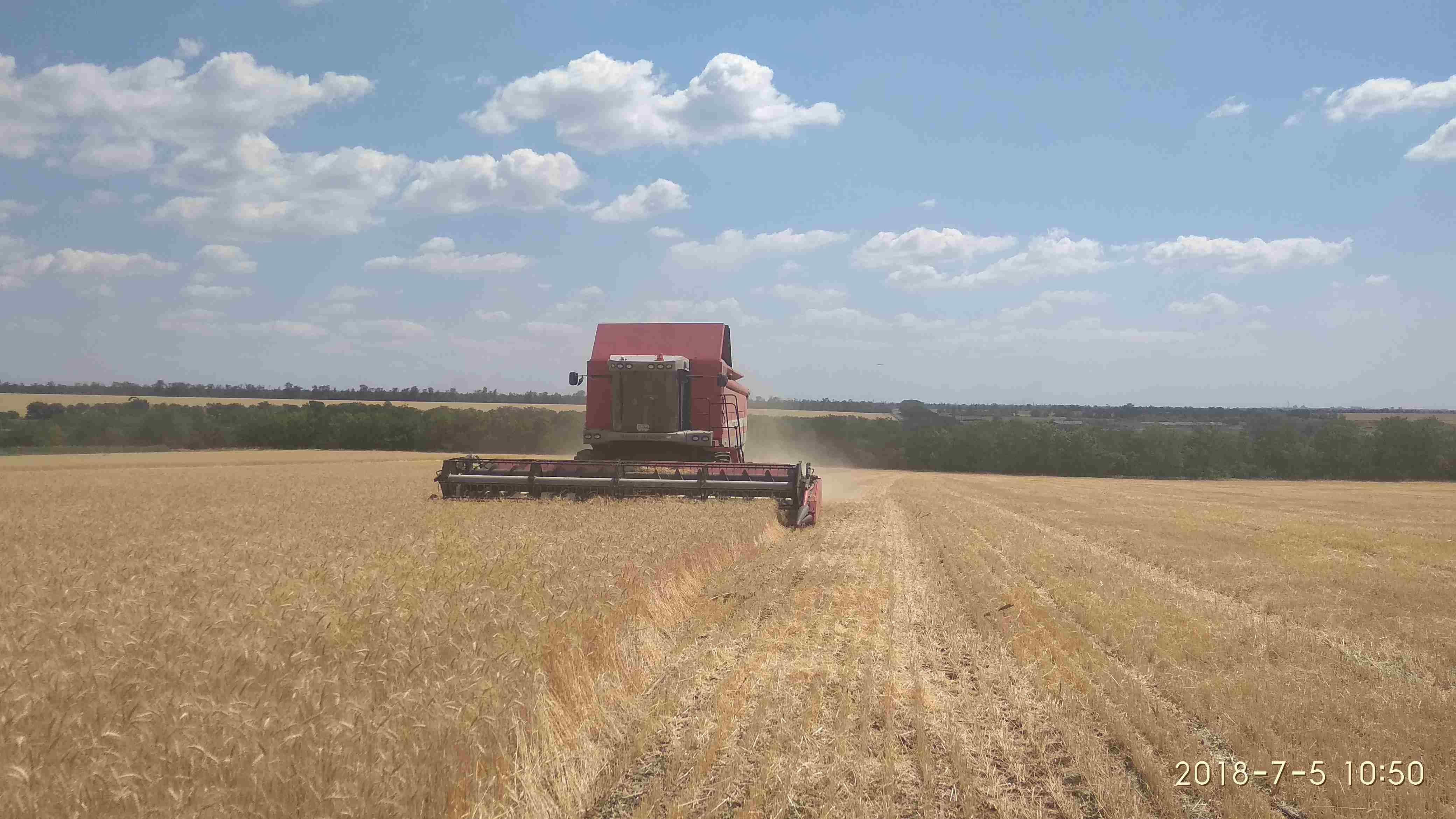 На Донеччині триває збирання врожаю ранніх зернових та зернобобових культур