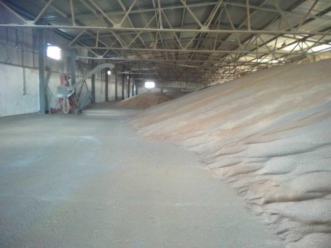 Ціни на кукурудзу і соняшник станом на 05.10.2018