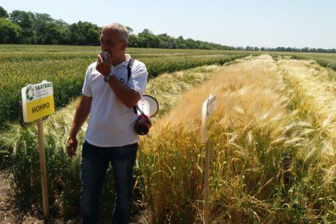 Обласний День поля «Інноваційні технології вирощування сільськогосподарських культур в агрокліматичних умовах Донецької області»