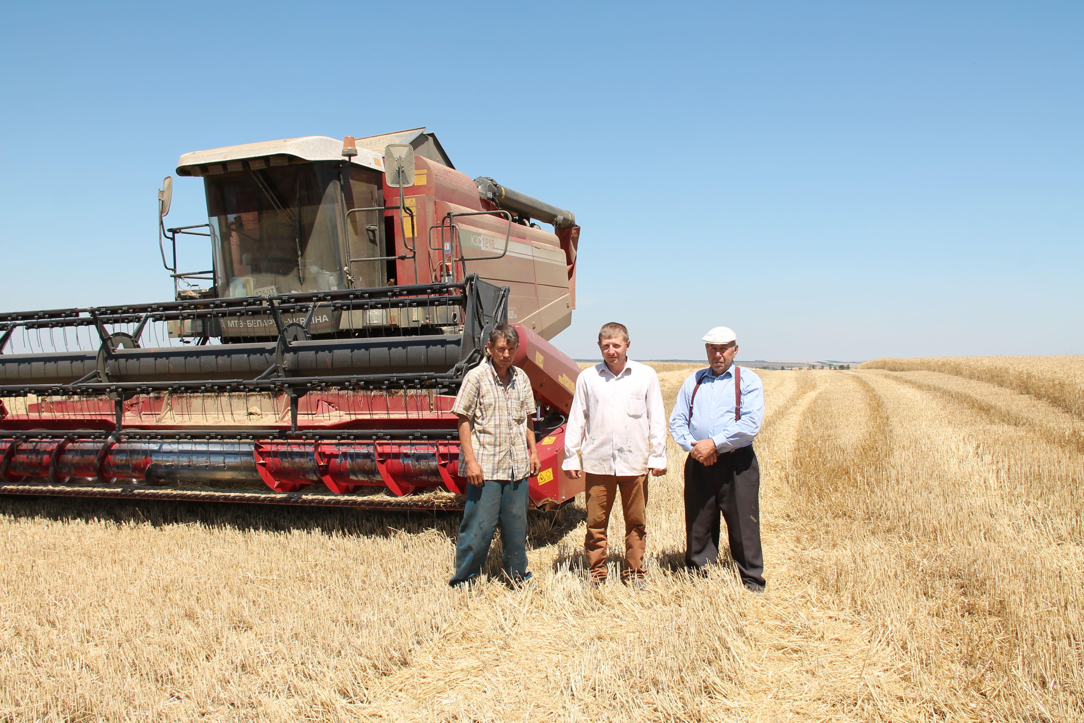 Підприємства Нікольського району почали збирання ранніх зернових та зернобобових культур
