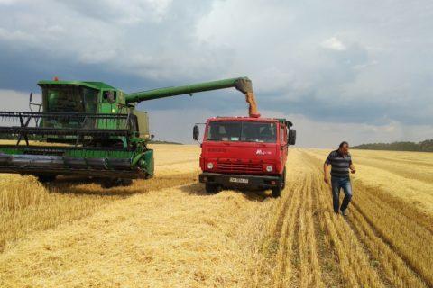 В Мар'їнському районі ранніх зернових та зернобобових культур вже зібрано 70,9 % до прогнозу