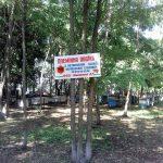 Матковивідна справа у бджільництві (04)