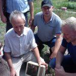 Матковивідна справа у бджільництві (11)