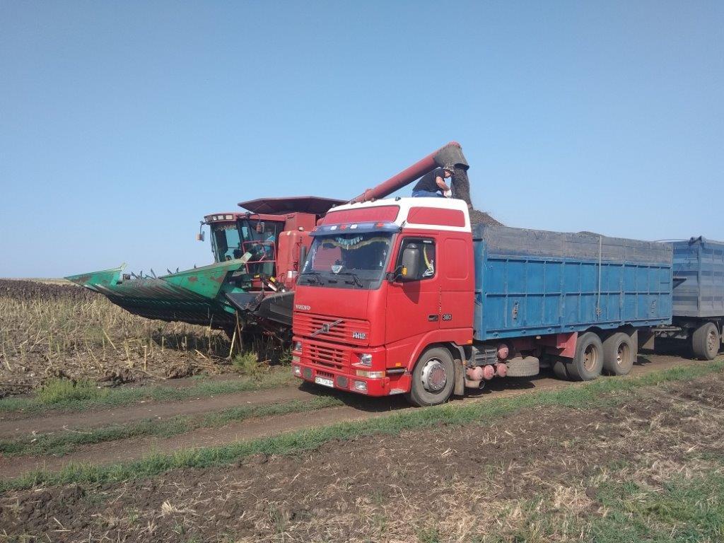 Стан галузі рослинництва в Донецькій області (на 06.09.2019)