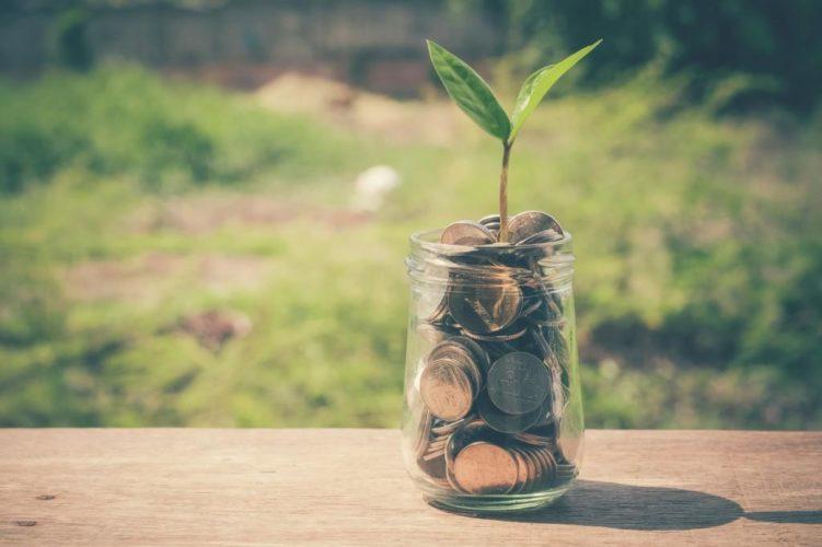 Мінагрополітики пропонує фермерським господарствам скористатися бюджетною фінансовою підтримкою в 2019 році