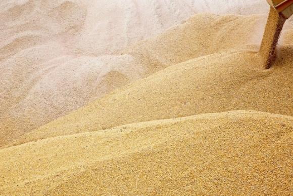 Ціни на зерно врожаю 2019 року станом на 17.04.2020 року