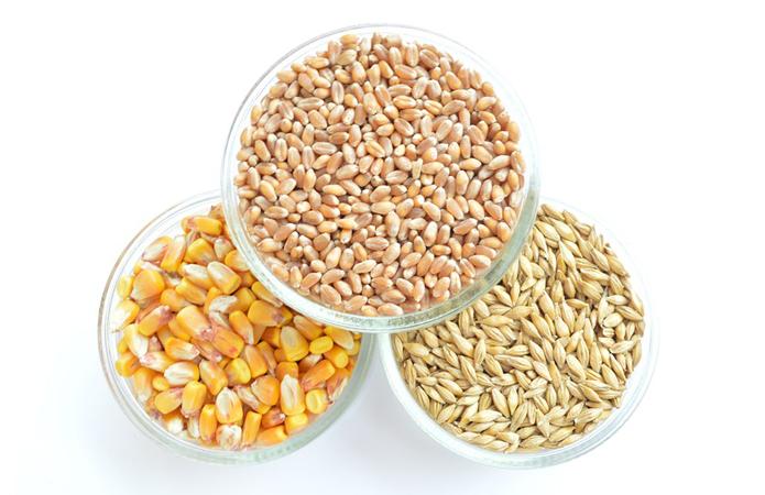 Ціни на зерно врожаю 2019 року станом на 24.04.2020 року