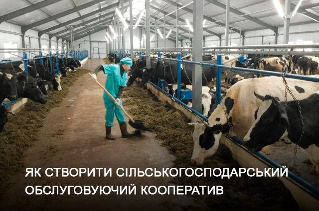 Як створити сільськогосподарський обслуговуючий кооператив