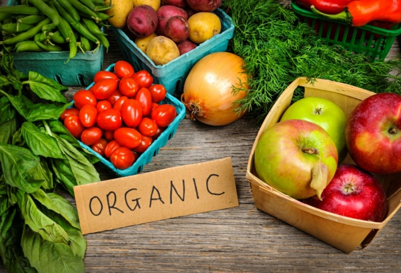 Україна посіла 1 місце в Європі за обсягами експортованої органічної продукції та 2-ге місце у світі