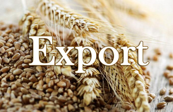 Уряд ухвалив постанову щодо спрощення міжнародної торгівлі зерновими культурами