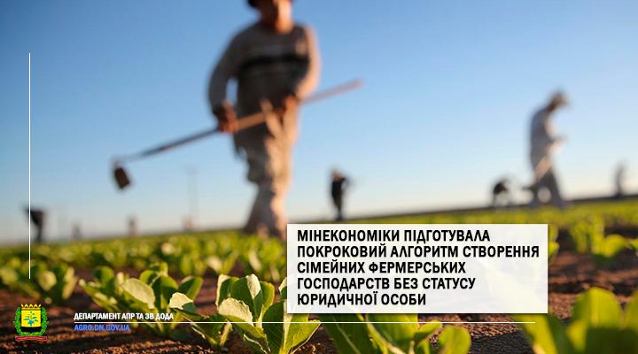 Мінекономіки підготувала покроковий алгоритм створення сімейних фермерських господарств без статусу юридичної особи
