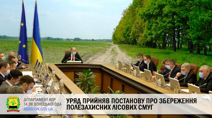 Уряд прийняв Постанову про збереження полезахисних лісових смуг