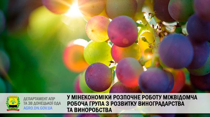 У Мінекономіки розпочне роботу міжвідомча робоча група з розвитку виноградарства та виноробства