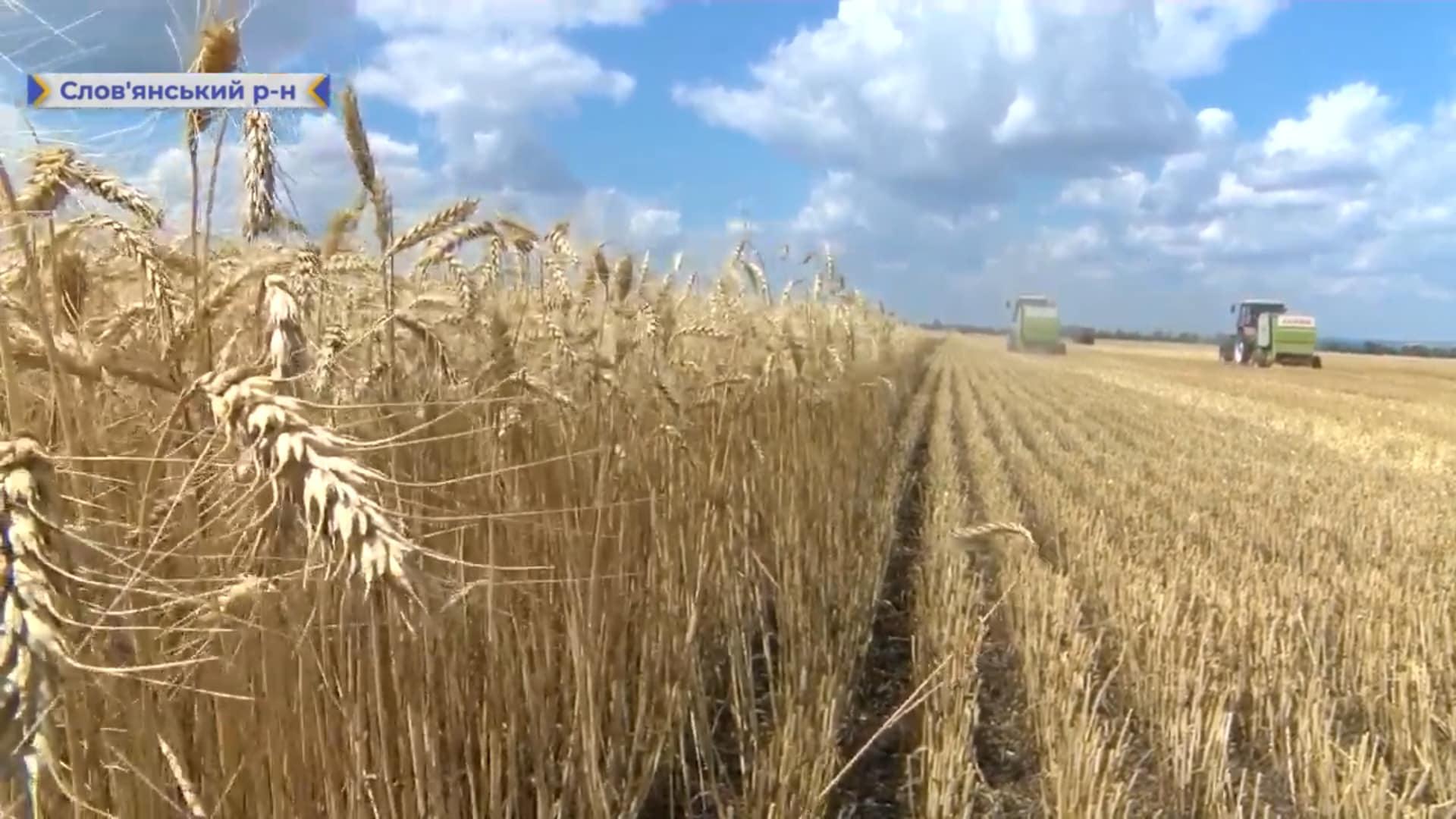На Донеччині триває збір ранньої групи зернових культур