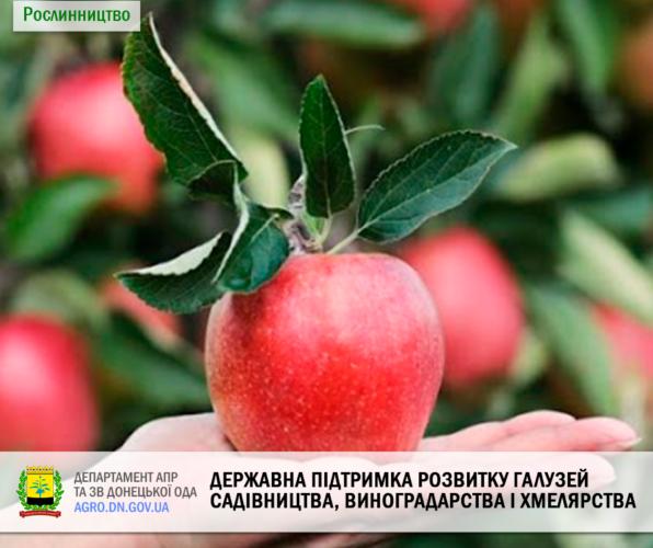 Державна підтримка розвитку галузей садівництва, виноградарства і хмелярства