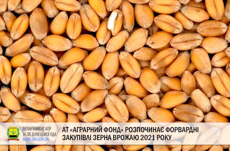 АТ «Аграрний фонд» розпочинає форвардні закупівлі зерна врожаю 2021 року