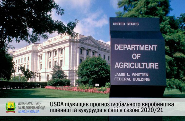 USDA підвищив прогноз глобального виробництва пшениці та кукурудзи в світі в сезоні 2020/21