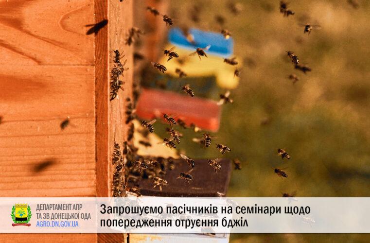 Запрошуємо пасічників на семінари щодо попередження отруєння бджіл