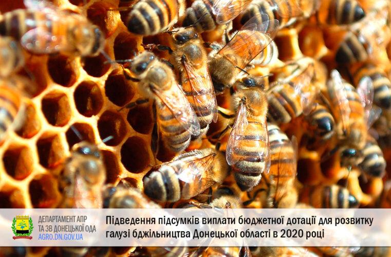 Підведення підсумків виплати бюджетної дотації для розвитку галузі бджільництва Донецької області у 2020 році