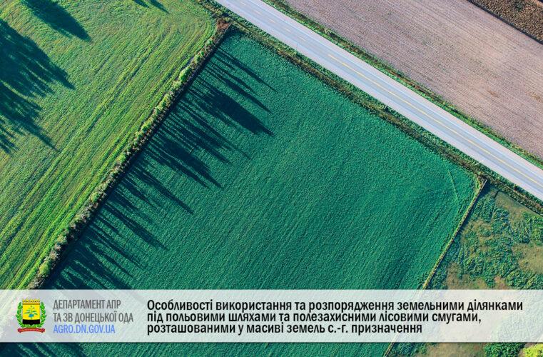 Особливості використання та розпорядження земельними ділянками під польовими шляхами та полезахисними лісовими смугами, розташованими у масиві земель сільськогосподарського призначення