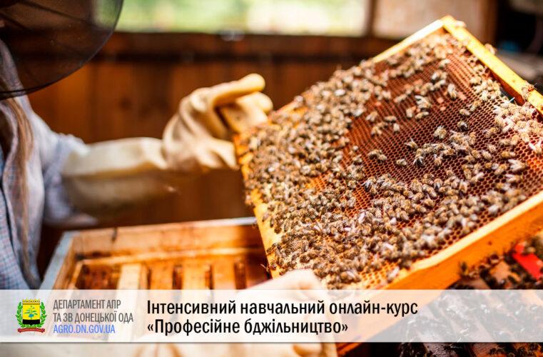 Інтенсивний навчальний онлайн-курс «Професійне бджільництво»