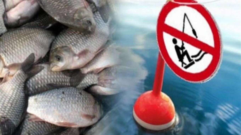 Увага! Встановлено заборону на вилов водних біоресурсів