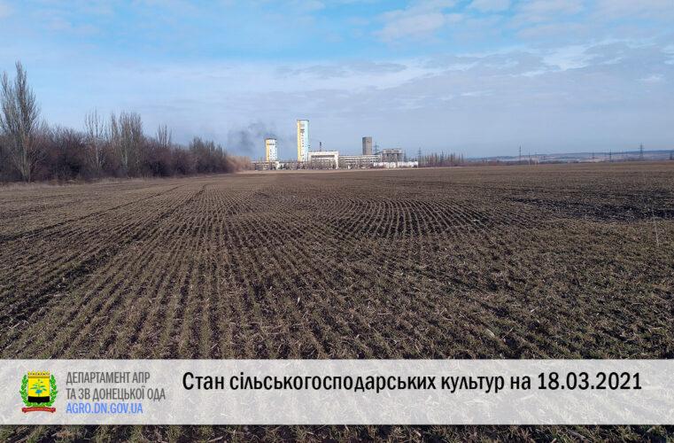 Стан сільськогосподарських культур на 18.03.2021