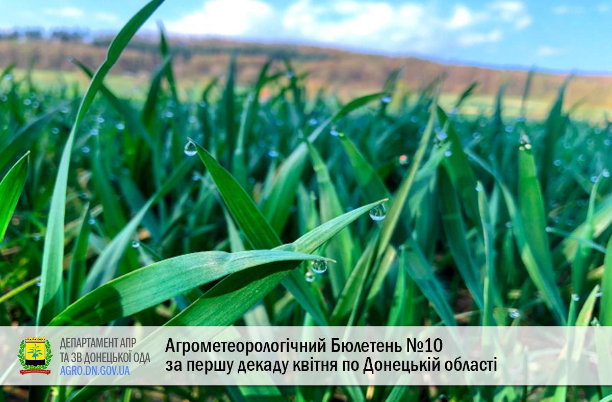 Агрометеорологічний Бюлетень №10 за першу декаду квітня по Донецькій області