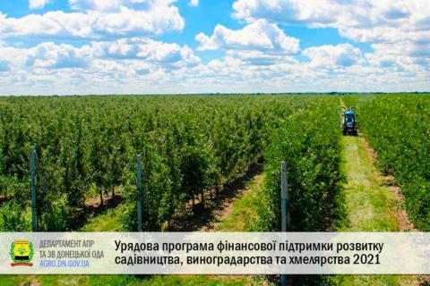 Урядова програма фінансової підтримки розвитку садівництва, виноградарства та хмелярства 2021