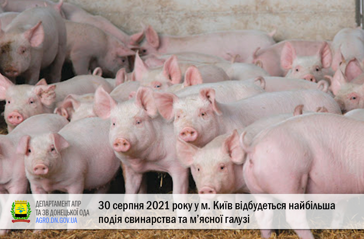 30 серпня 2021 року у м. Київ відбудеться найбільша подія свинарства та м'ясної галузі