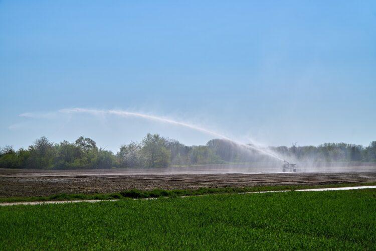 Державна підтримка сільгосптоваровиробників, які використовують меліоровані землі