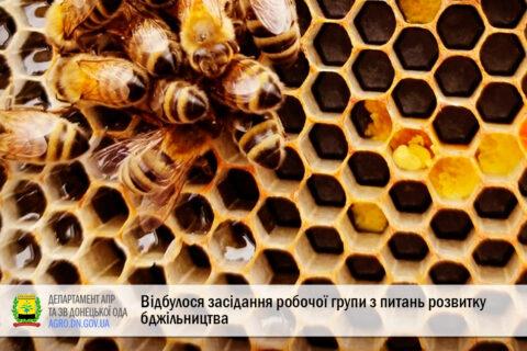 Відбулося засідання робочої групи з питань розвитку бджільництва