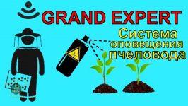 grand expert
